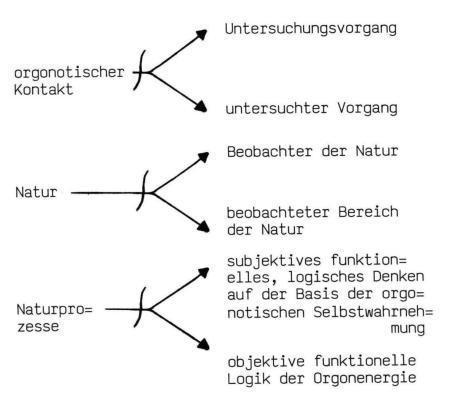 funktionalismus27